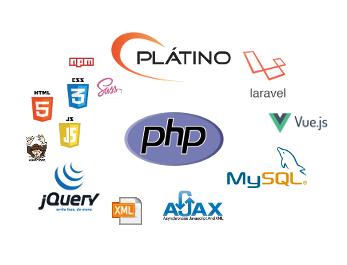 Web Development Skills